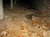 Under-floor Ventilation would have prevented mould growth in sub-floor